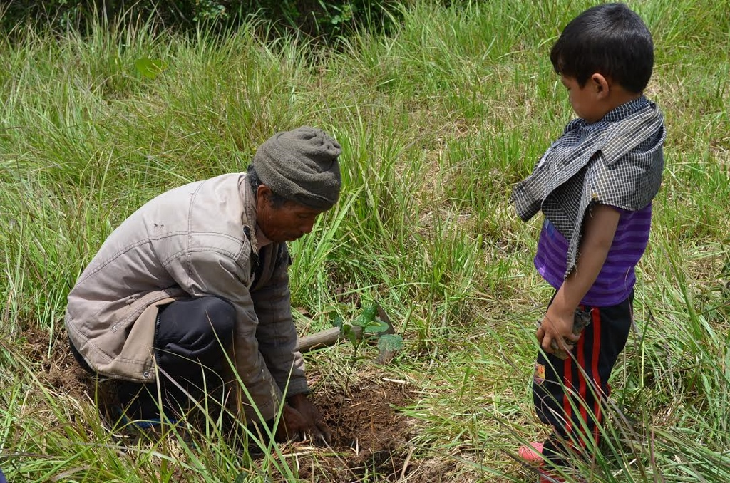 Elder of Mawhiang teaching a child of the village the correct way to plant trees. Photo: Raisa Daimary/NESFAS