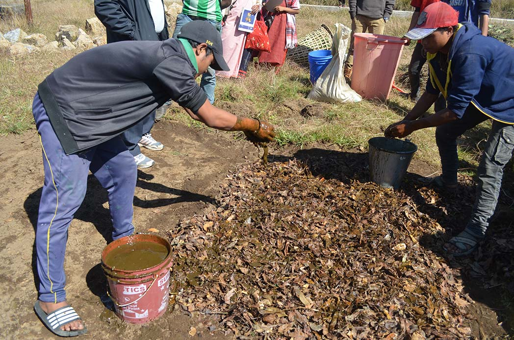 Cow dung mixed with water