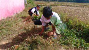 young students being involve after their classes in their school garden