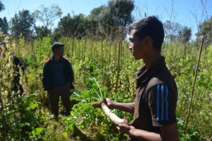 Youth Agriculture Meghalaya
