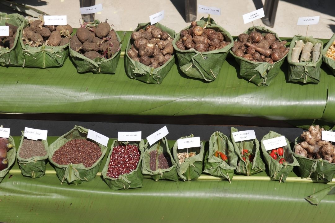 Communities showcase 50+ types of Indigenous seeds at an inter village seed fair