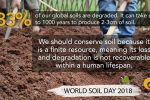 Be the Solution to Soil Pollution!